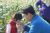 2011台南過新年:亞歷山大蝴蝶生態教育農場-14.JPG