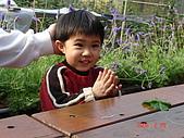 2Y9M的邦子:大湖採草莓 2008-2-28 下午 03-31-47.jpg