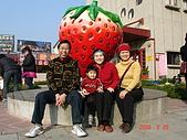 2Y9M的邦子:大湖採草莓 2008-2-28 下午 04-12-37.jpg