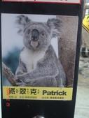 2Y9M的邦子:木柵動物園 2008-2-29 下午 02-29-27.jpg