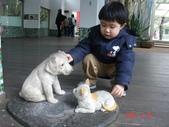 2Y9M的邦子:木柵動物園 2008-2-29 下午 02-43-31.jpg