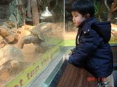 2Y9M的邦子:木柵動物園 2008-2-29 下午 03-24-51.jpg