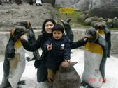 2Y9M的邦子:木柵動物園 2008-2-29 下午 03-42-23.jpg
