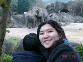 2Y9M的邦子:木柵動物園 2008-2-29 下午 04-17-50.jpg
