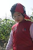 2011台南過新年:亞歷山大蝴蝶生態教育農場-17.JPG