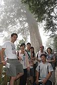 宜蘭棲蘭神木園 與 雅蘆民宿:棲蘭神木之旅-177.JPG