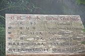 宜蘭棲蘭神木園 與 雅蘆民宿:棲蘭神木之旅-195.JPG