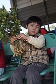 2011台南過新年:亞歷山大蝴蝶生態教育農場-33.JPG