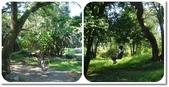 2013 出去走走:2013.08.26-2 香格里拉農場 2.jpg