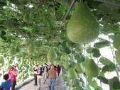 2021屏東熱帶農業博覽會之行:IMG_4549.JPG