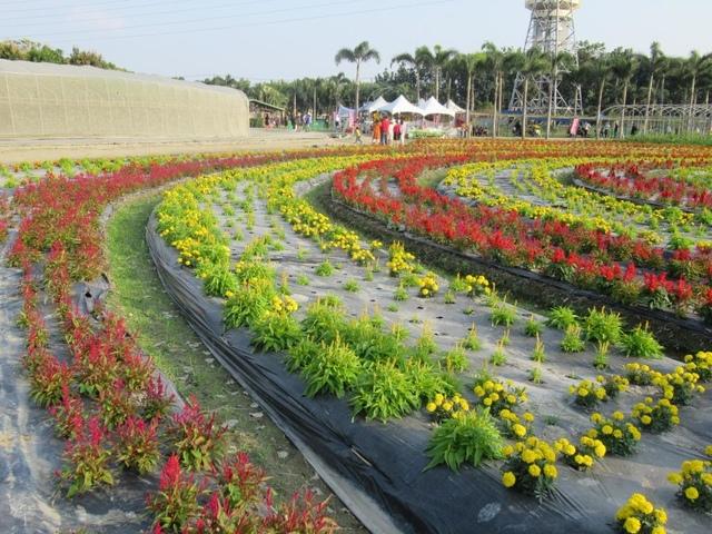 IMG_4584.JPG - 2021屏東熱帶農業博覽會之行