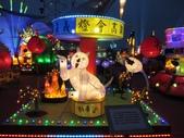 2018台灣燈會在嘉義之行:IMG_8978.JPG