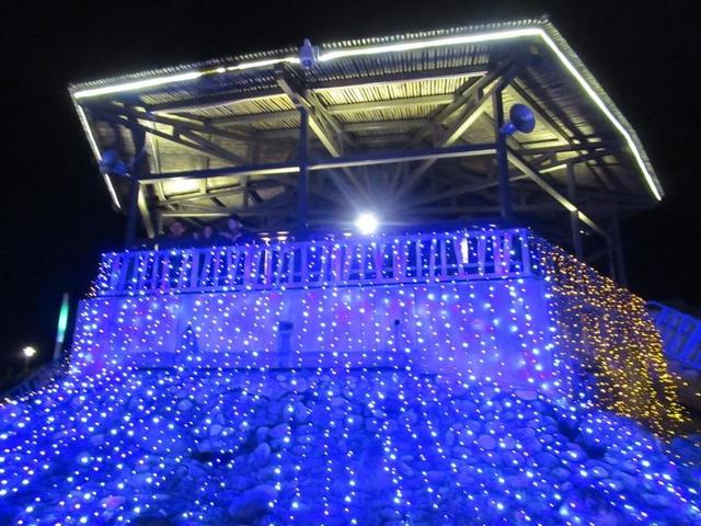 IMG_7872.JPG - 台東小野柳.三仙台和花蓮東大門夜市.太平洋花彩節之行
