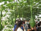 2021屏東熱帶農業博覽會之行:IMG_4534.JPG