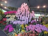 2021屏東熱帶農業博覽會之行:IMG_4540.JPG