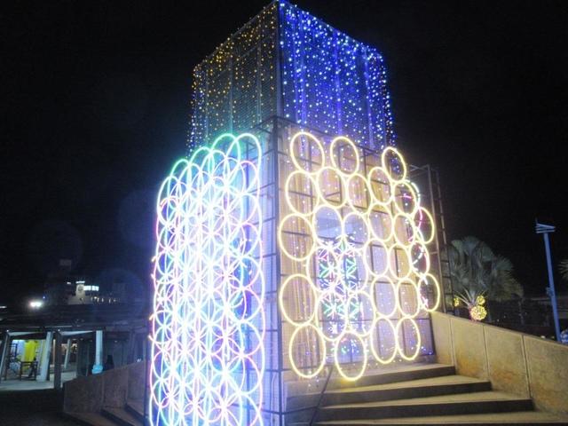 IMG_7885.JPG - 台東小野柳.三仙台和花蓮東大門夜市.太平洋花彩節之行