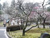2020.02.14-19日本三溫泉六日遊:DSCN4201.JPG