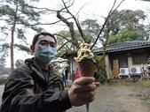 2020.02.14-19日本三溫泉六日遊:DSCN4211.JPG
