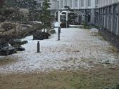 2020.02.14-19日本三溫泉六日遊:DSCN4263.JPG