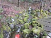 2020.02.14-19日本三溫泉六日遊:DSCN4217.JPG