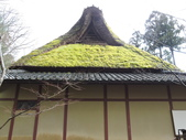 2020.02.14-19日本三溫泉六日遊:DSCN4218.JPG