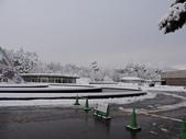 2020.02.14-19日本三溫泉六日遊:DSCN4302.JPG