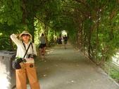 維也納熊布朗宮-瑪麗亞·特蕾西亞廣場-英雄廣場-新王宮1080827:1080827維也納016-熊布朗宮.jpg