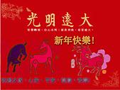 恭賀新年快樂! 祝福安康幸福! :乙未2015農曆新年快樂.jpg