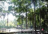 廣州黃花崗七十二烈士陵園 :DSC00373