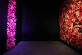 2013國際花藝設計大賽:IMG_1737