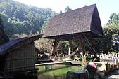 九族文化村:IMG_1240
