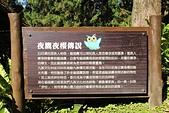 九族文化村:IMG_1241