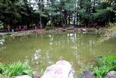 福壽山農場 - 2020:天池