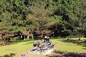 九族文化村:IMG_1231