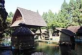 九族文化村:IMG_1238