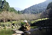九族文化村:櫻花湖