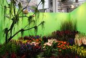 2014臺北花卉裝置藝術設計展:IMG_2968