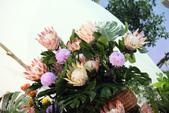 2014臺北花卉裝置藝術設計展:IMG_2986