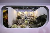 2014臺北花卉裝置藝術設計展:IMG_2972