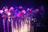 2015愛與芬芳臺北國際花藝設計大展:IMG_8802