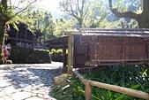九族文化村:IMG_1205