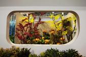 2014臺北花卉裝置藝術設計展:IMG_2967