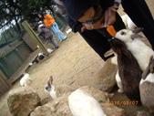 100/03/07埔心牧場:IMGP2206.JPG