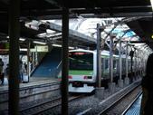 日本東京之旅:DSCN0033.JPG
