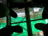 2012難忘的台北之旅:2012台北之旅 246.jpg