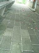 0430賞玫瑰:DSC00811