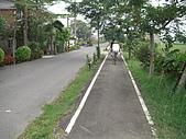 2009-05-29 朴子溪自行車道:CIMG7197_resize.JPG