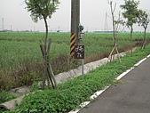 2009-05-29 朴子溪自行車道:CIMG7226_resize.JPG