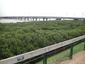 2009-05-29 朴子溪自行車道:CIMG7260_resize.JPG