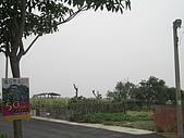2009-05-29 朴子溪自行車道:CIMG7212_resize.JPG